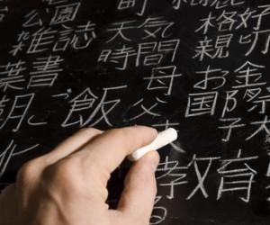 Warum Auslandssemester und -praktika sinnvoll sind
